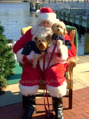Santa Claus Posing with Pups